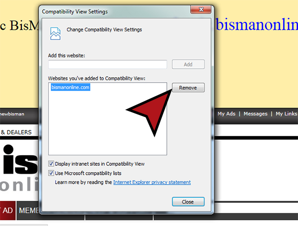 Compatibility Issues when using Internet Explorer 11